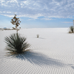 147-Whitesands,-Photo-Credit---Las-Cruces-CVB
