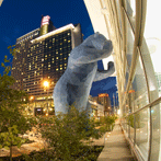 Colorado-CC-147-Blue-Bear