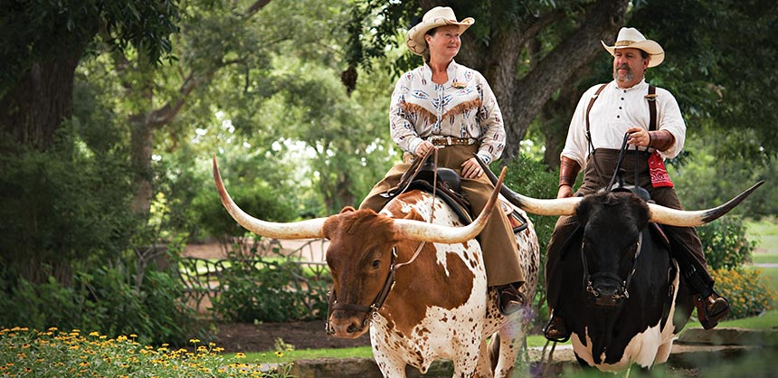 "Hyatt Regency Lost Pines Resort & Spa's ""Hooves & Horns"" mascot program allows groups to interact with Texas Longhorns."