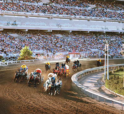 Don your white cowboy hat and enjoy the Chuckwagon races. Credit: Calgary Stampede