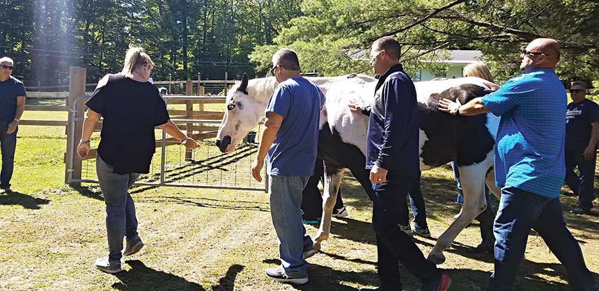 MassMutual Life Insurance Company held a teambuilding event with horses at Berkshire HorseWorks' ranch in Richmond, Massachusetts. Credit: Berkshire HorseWorks