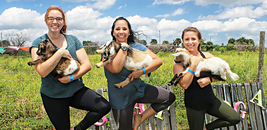 While live bands will always have a place at meetings, attendees are increasingly looking for entertainment or relaxation options that don't fit in the traditional mold, but still create memorable experiences, such as goat yoga.