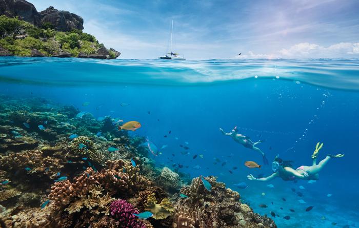 Fiji-Reopening-700px